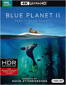 Blue Planet II (4K Ultra HD)