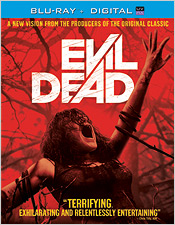 The Evil Dead (2013 - Blu-ray Disc)