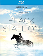 The Black Stallion (Blu-ray Disc)