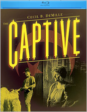 Captive (Blu-ray Disc)