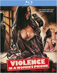 Violence in a Women's Prison (Blu-ray Disc)